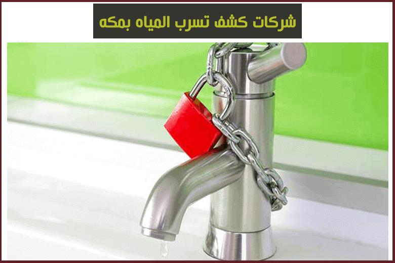 شركات كشف تسربات المياه بمكة
